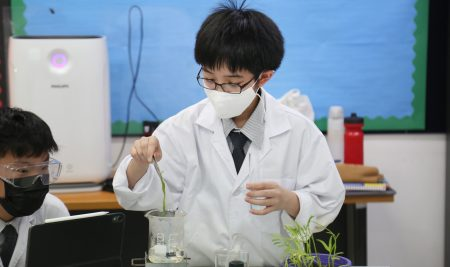 Our Year 8 students have been experimenting with photosynthesis.