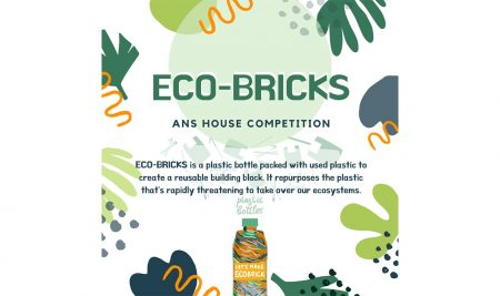 Our Y12 and Y13 students have set up a competition to tackle plastic waste in a constructive way.